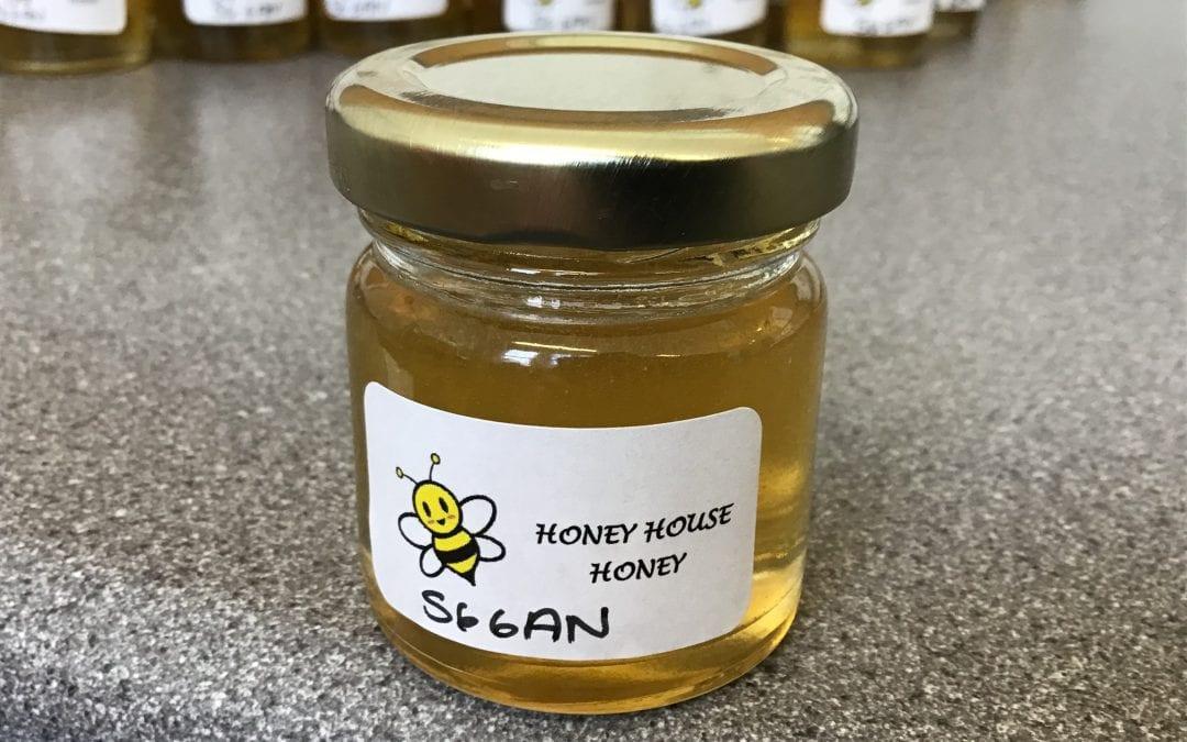 Honey Day!!